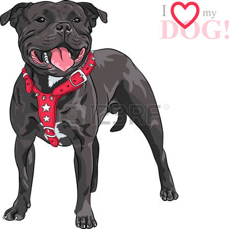 American Pit Bull Terrier clipart #4, Download drawings