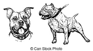 American Pit Bull Terrier clipart #17, Download drawings