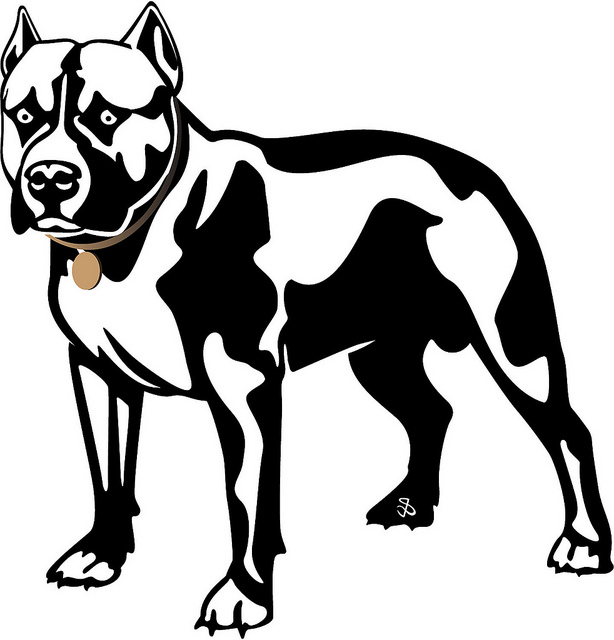 American Pit Bull Terrier svg #16, Download drawings