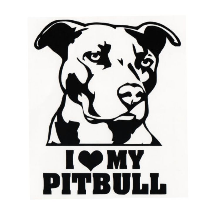 American Pit Bull Terrier svg #6, Download drawings