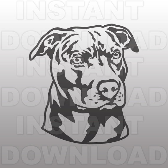 American Pit Bull Terrier svg #17, Download drawings