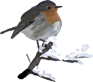 American Robin clipart #18, Download drawings
