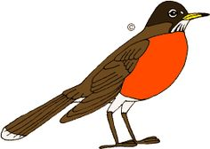 American Robin clipart #7, Download drawings