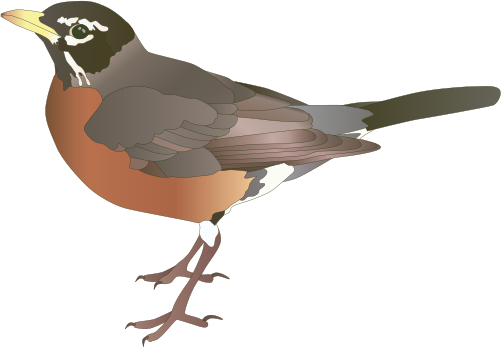 Robin svg #18, Download drawings