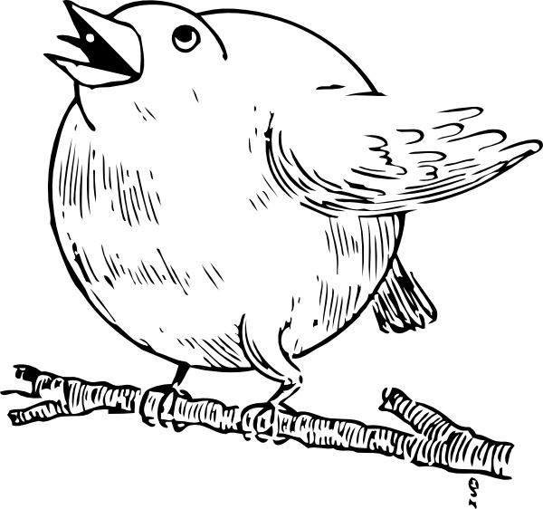 American Robin svg #15, Download drawings