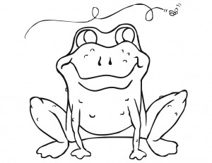 American Toad coloring #2, Download drawings