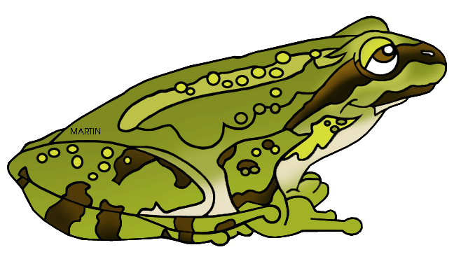 Amphibian clipart #7, Download drawings