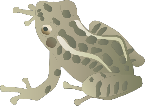 Amphibian svg #15, Download drawings