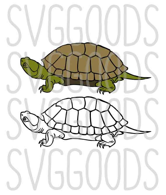 Tortoise svg #11, Download drawings