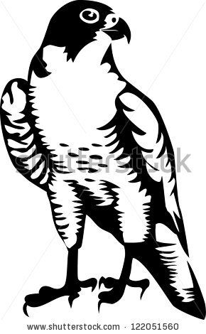 Amur Falcon clipart #7, Download drawings