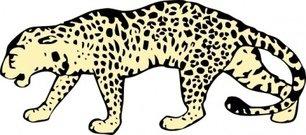 Amur Leopard clipart #17, Download drawings