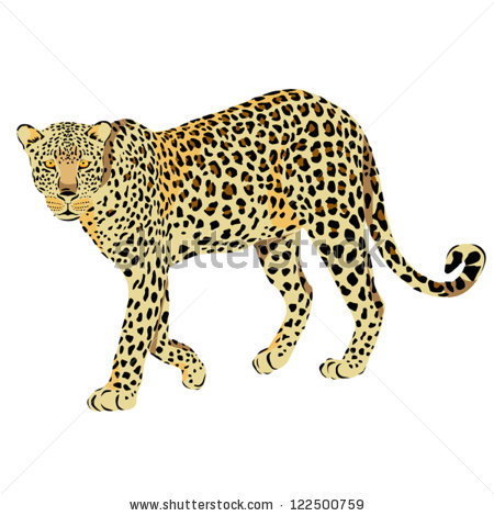 Amur Leopard clipart #7, Download drawings