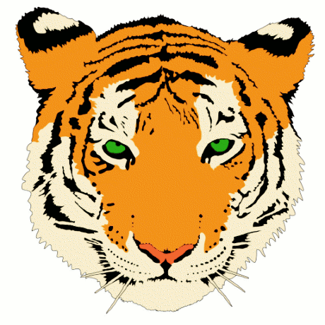 Amur Tiger clipart #17, Download drawings