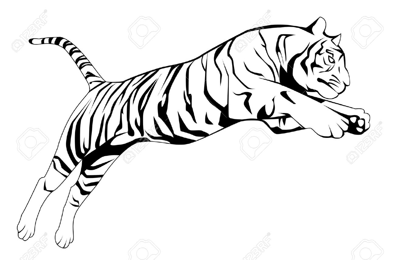 Amur Tiger clipart #1, Download drawings