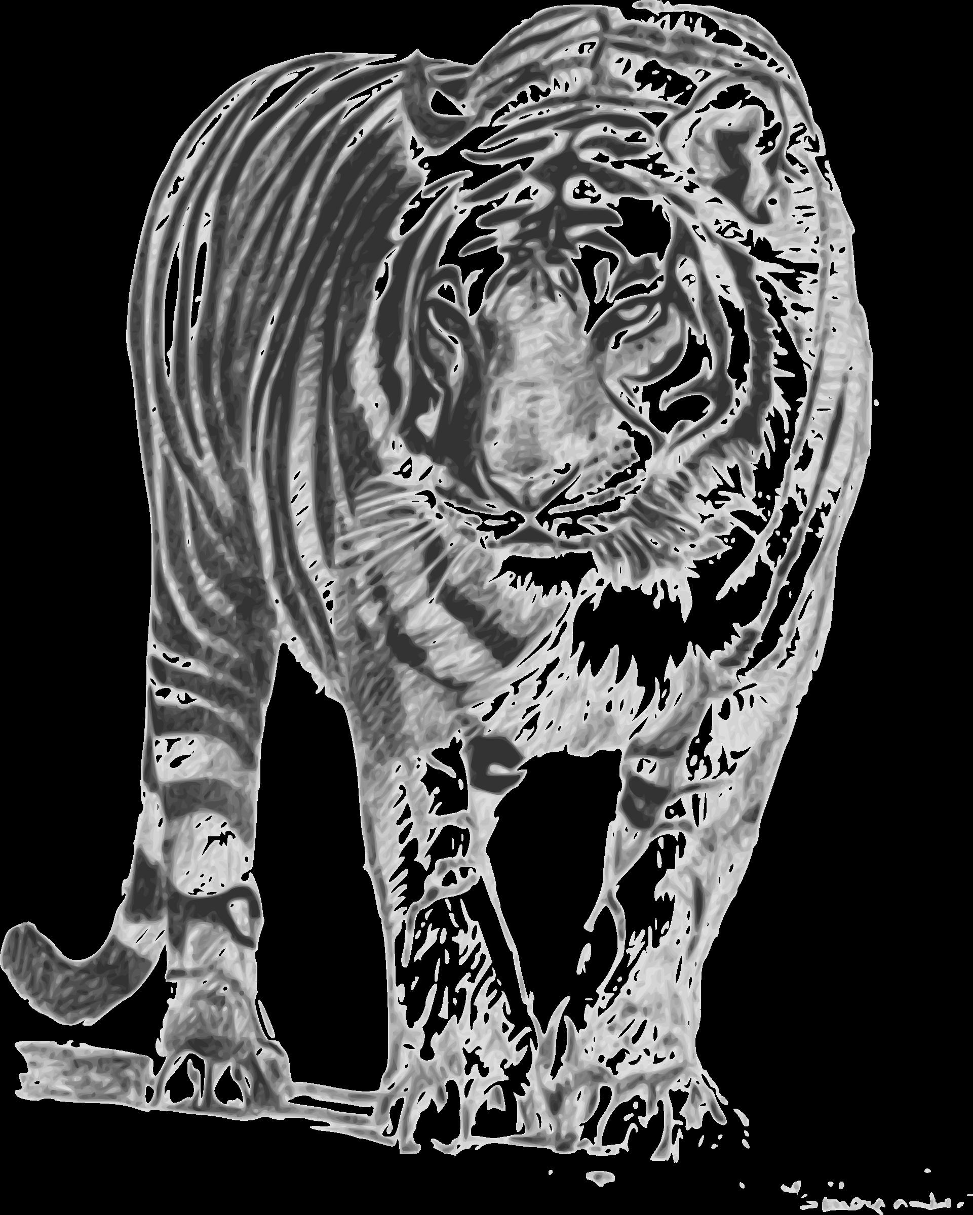 Siberian Tiger svg #6, Download drawings