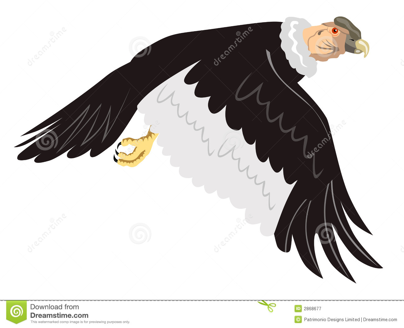 Andean Condor clipart #17, Download drawings