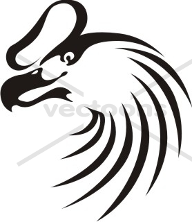 Andean Condor clipart #16, Download drawings