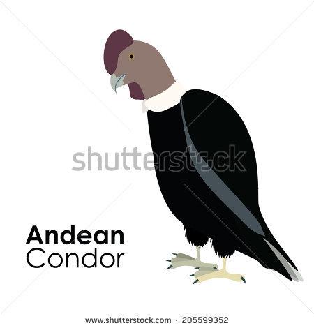 California Condor  svg #16, Download drawings