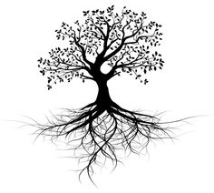 Angel Oak Tree svg #9, Download drawings