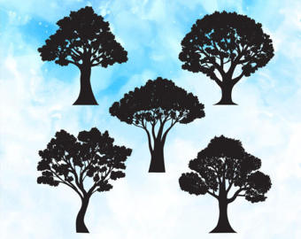 Angel Oak Tree svg #19, Download drawings
