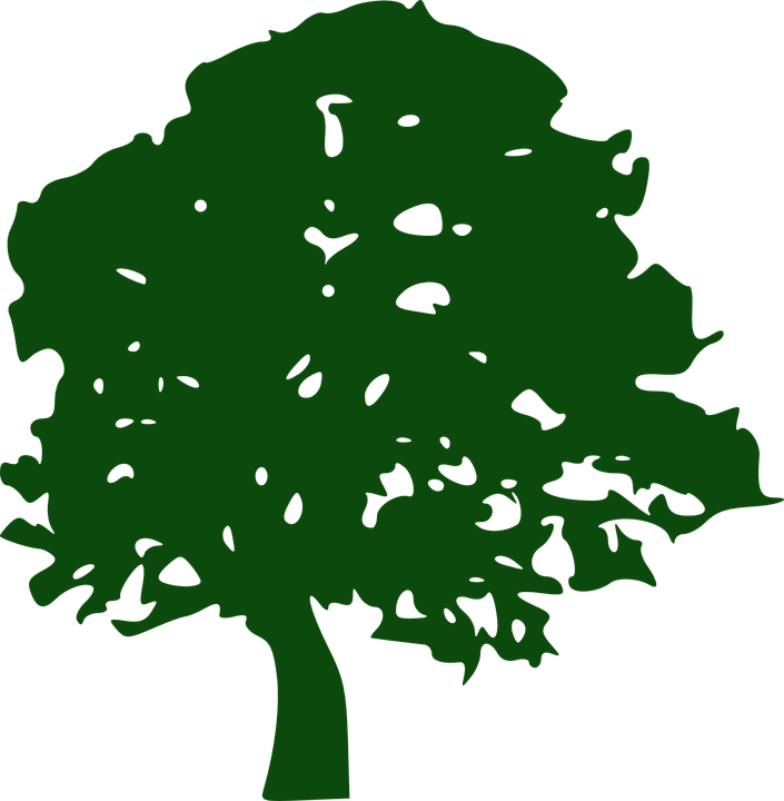Angel Oak Tree svg #5, Download drawings