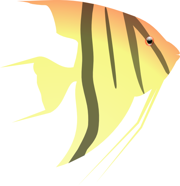 Angelfish clipart #9, Download drawings
