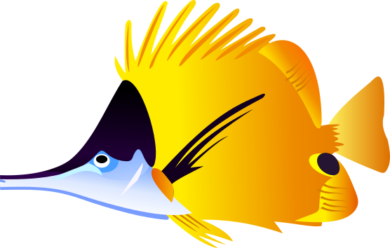 Angelfish clipart #12, Download drawings