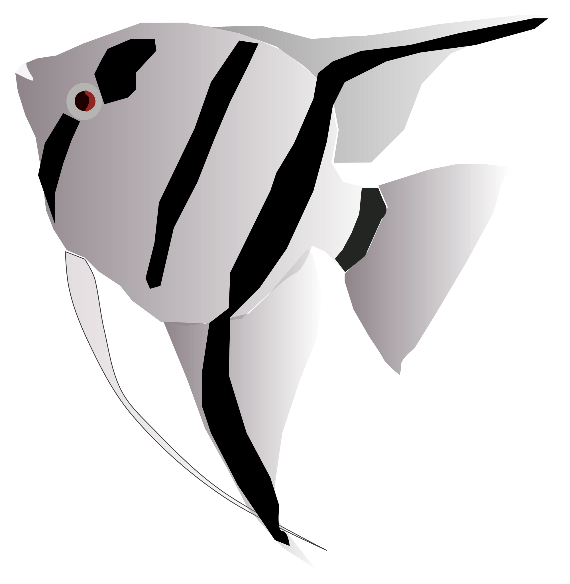 Angelfish svg #18, Download drawings