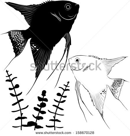 Angelfish svg #5, Download drawings