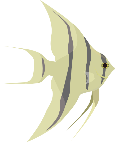 Angelfish svg #17, Download drawings