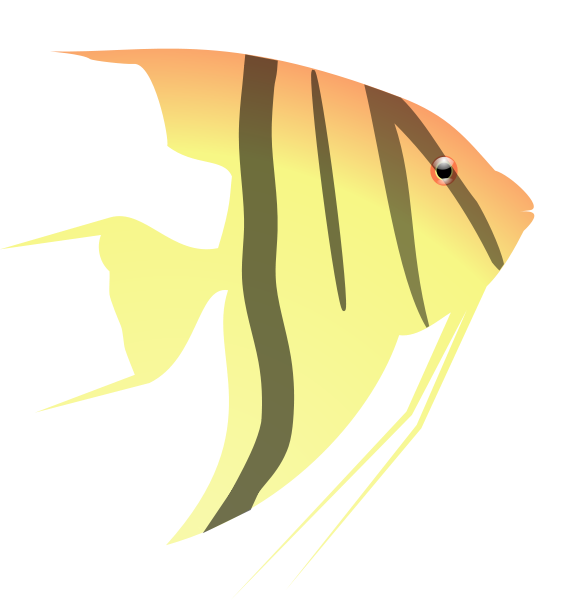 Angelfish svg #16, Download drawings