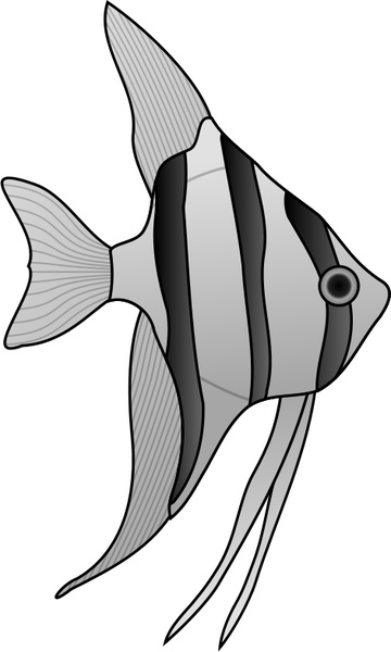 Angelfish svg #20, Download drawings