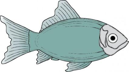 Anhinga clipart #20, Download drawings