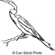 Anhinga clipart #6, Download drawings