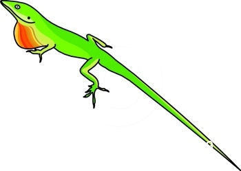 Anole clipart #20, Download drawings
