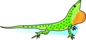 Anole clipart #17, Download drawings