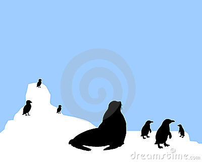 Antarctica clipart #17, Download drawings