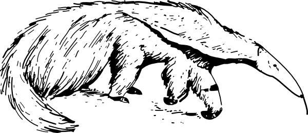 Anteater clipart #11, Download drawings