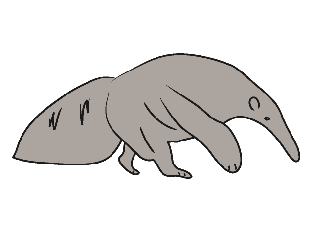 Anteater clipart #9, Download drawings