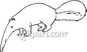 Anteater clipart #8, Download drawings