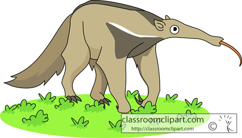 Anteater clipart #16, Download drawings