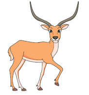 Impala clipart #5, Download drawings