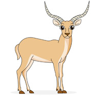 Impala clipart #19, Download drawings