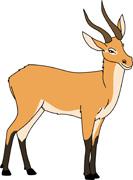 Antelope clipart #11, Download drawings