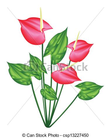 Anthurium clipart #20, Download drawings