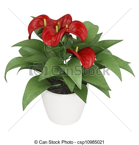 Anthurium clipart #12, Download drawings