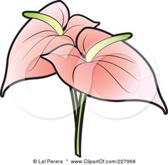 Anthurium clipart #6, Download drawings