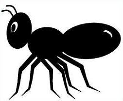 Ants clipart #5, Download drawings