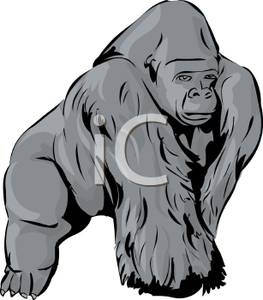 Ape clipart #2, Download drawings