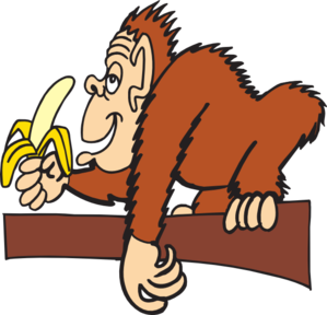 Ape clipart #15, Download drawings